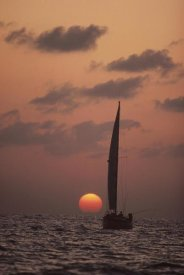 Flip Nicklin - Sailboat adrift at sunset, Sri Lanka