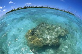 Tui De Roy - Reef seascape, Palmyra Atoll NWR, US Line Islands