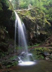Tim Fitzharris - Grotto Falls and Roaring Fork Motor Nature Trail, Great Smoky Mountains