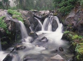 Tim Fitzharris - Paradise River cascade, Mt Rainier National Park, Washington