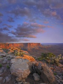 Tim Fitzharris - View from the Green River Overlook, Canyonlands National Park, Utah