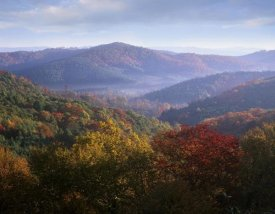 Tim Fitzharris - Autumn deciduous forest from the Blue Ridge Parkway, North Carolina
