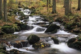 Konrad Wothe - Creek cascading through autumn forest, Bayerischer Wald NP, Germany