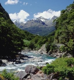 Konrad Wothe - Hollyford River and the Eyre Range, Fjordland NP,  New Zealand