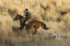 Konrad Wothe - Cowboy riding Horse, followed by two Dogs , Oregon