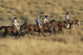 Konrad Wothe - Cowboys and a cowgirl riding Horses through field, Oregon