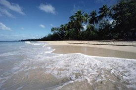 Gerry Ellis - Grand Anse Des Salines, Martinique, West Indies