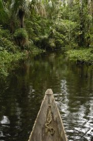 Pete Oxford - Dugout canoe in blackwater stream, Yasuni National Park, Amazonia, Ecuador