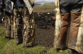 Pete Oxford - Ocelot fur and goat hair on chaps worn by Chagras, Andes Mountains, Ecuador