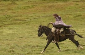 Pete Oxford - Chagra cowboy riding his Horse,  in the Andes Mountains, Ecuador