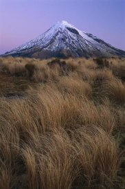 Shaun Barnett - Mount Taranaki at dusk, Mount Egmont National Park, New Zealand