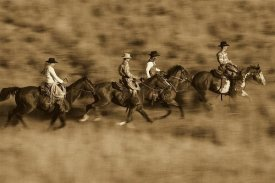 Konrad Wothe - Cowboys and a cowgirl riding Horses through field, Oregon - Sepia