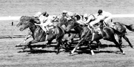 Robert Hallam - Horse Racing at Deauville, France