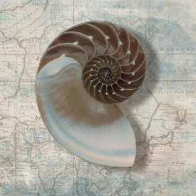 Ted Broome - Nautilus
