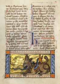 Franco-Flemish 13th Century - A Crocodile and a Hydrus