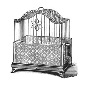 Catalog Illustration - Etchings: Birdcage - Flower detail.