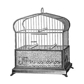 Catalog Illustration - Etchings: Birdcage - Onion-peak top, filigree pattern base
