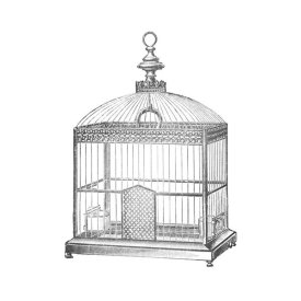 Catalog Illustration - Etchings: Birdcage - Arched top, filigree detail.