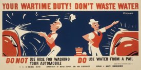 Earl Kerkam - Do not use hose for washing your automobile