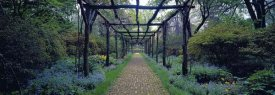 Richard Berenholtz - Garden path, Old Westbury Gardens, Long Island