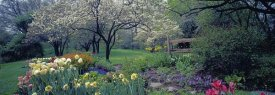 Richard Berenholtz - Country garden, Old Westbury Gardens, Long Island