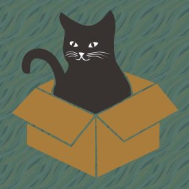 BG.Studio - Cat in a Box - Blue-Green