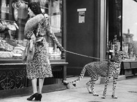 Anonymous - Elegant Woman with Cheetah