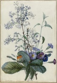 Pierre Joseph Redouté - A Bouquet of Flowers with Insects