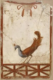 Unknown 1st Century Roman Artisan - Wall Fragment with a Peacock