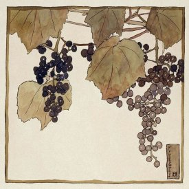 Hannah Borger Overbeck - Frost Grape