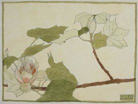Hannah Borger Overbeck - Tulip Tree