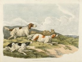 Henry Thomas Alken - Running Hounds, 1817