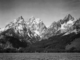 Ansel Adams - Grassy valley and snow covered peaks, Grand Teton National Park, Wyoming, 1941