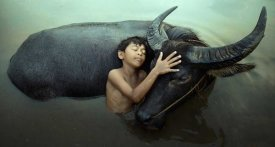 Fahmi Bhs - Peaceful