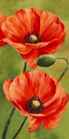 Luca Villa - Poppies in the wind II