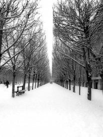 Michel Setboun - The Tuileries Garden under the snow, Paris