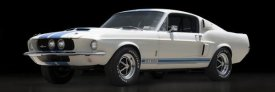 Gasoline Images - Shelby GT500