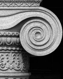 Carol Highsmith - Column detail, U.S. Treasury Building, Washington, D.C. - Black and White Variant
