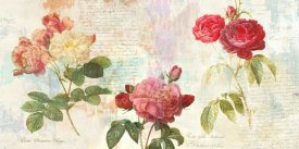 Eric Chestier - Redoute's Roses 2.0