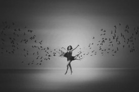 Mark Biwit - Ballerina Flight Of Birds