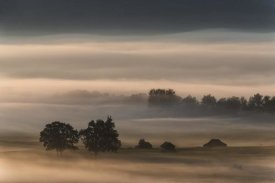 Nina Pauli - Dense Fog Over The Moos