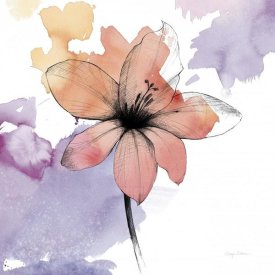 Avery Tillmon - Watercolor Graphite Flower II