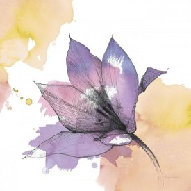 Avery Tillmon - Watercolor Graphite Flower IX