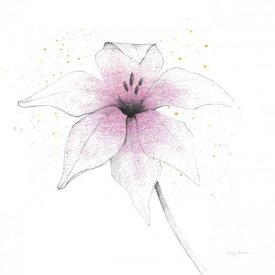 Avery Tillmon - Pink Graphite Flower V