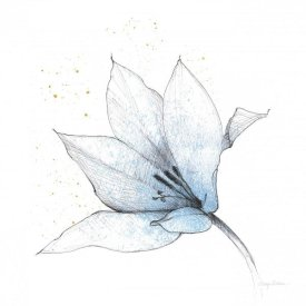 Avery Tillmon - Blue Graphite Flower IX