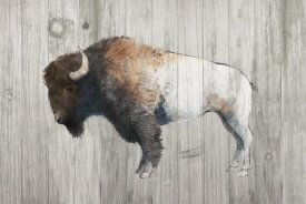 Avery Tillmon - Colorful Bison Dark Brown on Wood