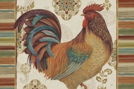Daphne Brissonnet - Rooster Rainbow IVA
