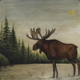 David Carter Brown - North Woods Moose II
