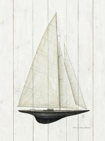 David Carter Brown - Salboats II