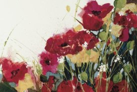 Jan Griggs - Poppies and Flowers on White